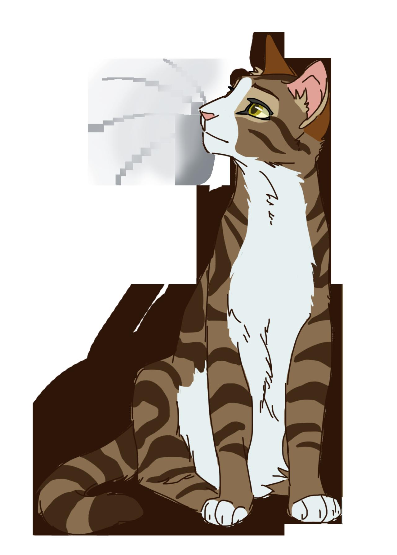warrior cats designs photo warrior cats pinterest
