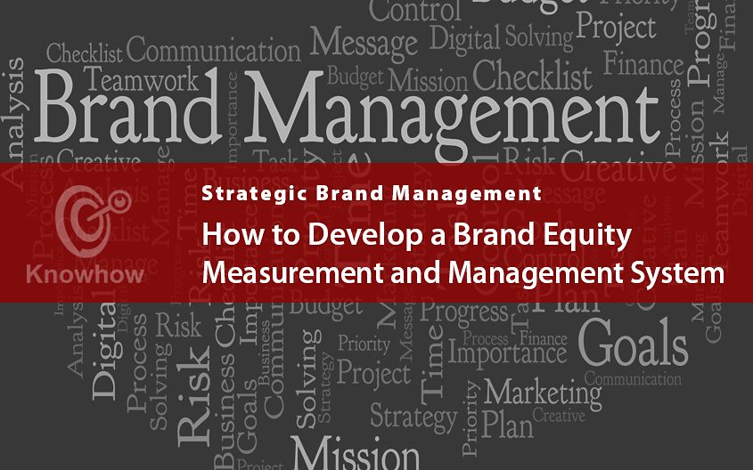 How To Develop A Brand Equity Measurement And Management System Development Strategic Brand Management Equity