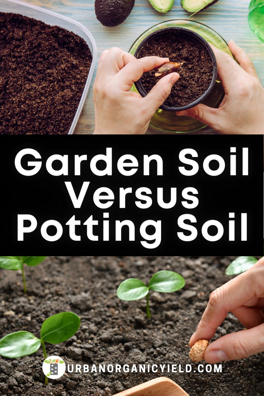 Garden Soil Vs Potting Soil Garden Soil Potting Soil Easy Vegetables To Grow