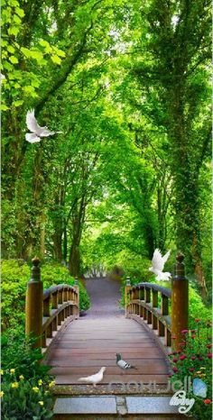 3D Forest Bridge Bird Corridor Entrance Wall Mural Decals Art Print Wallpaper 048