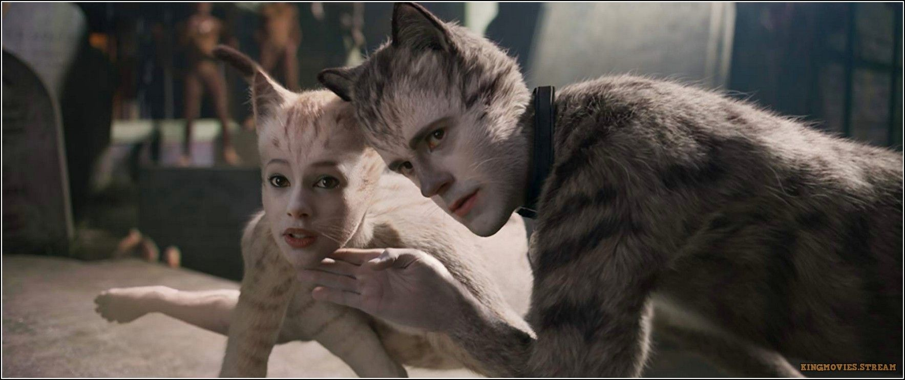 123movies Hd Watch Cats Online Cats Cat Online Movies