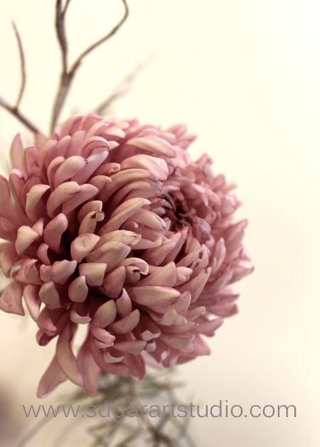 Gumpaste Chrysanthemum Www Sugarartstudio Com Sugar Flowers Tutorial Gum Paste Fondant Flowers