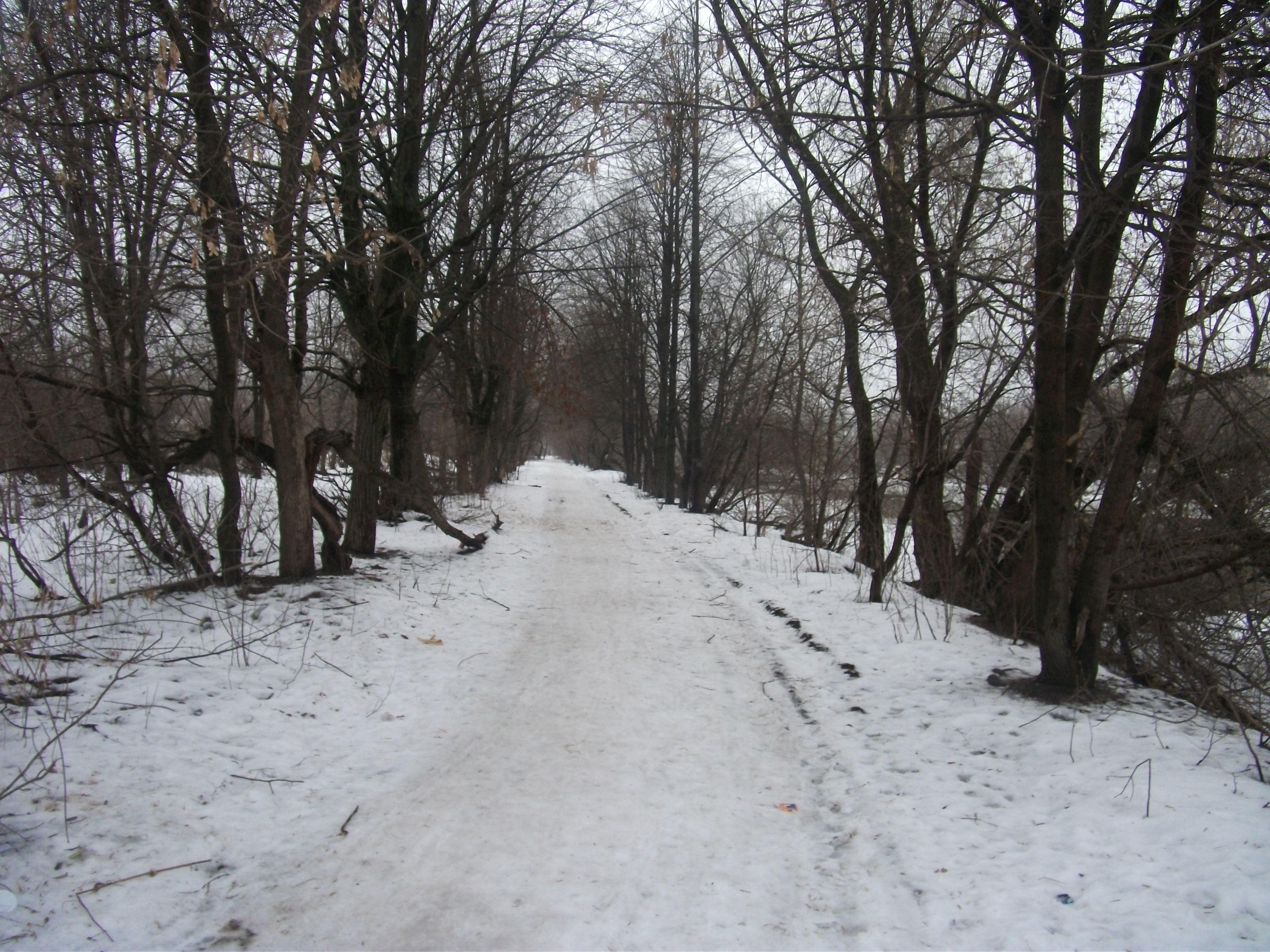River Uvod, Ivanovo, Russia 15/02/2014
