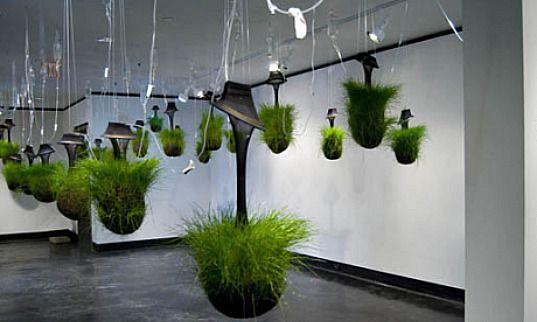 Hanging Gardens Kept Alive Through IV Drips Gardens