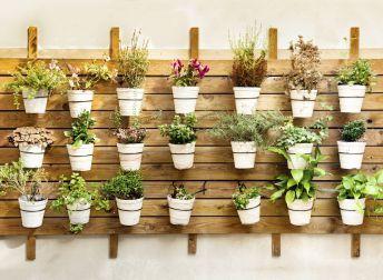 comment d corer sa terrasse avec des pots de jardin design pinterest pots de jardin pots. Black Bedroom Furniture Sets. Home Design Ideas