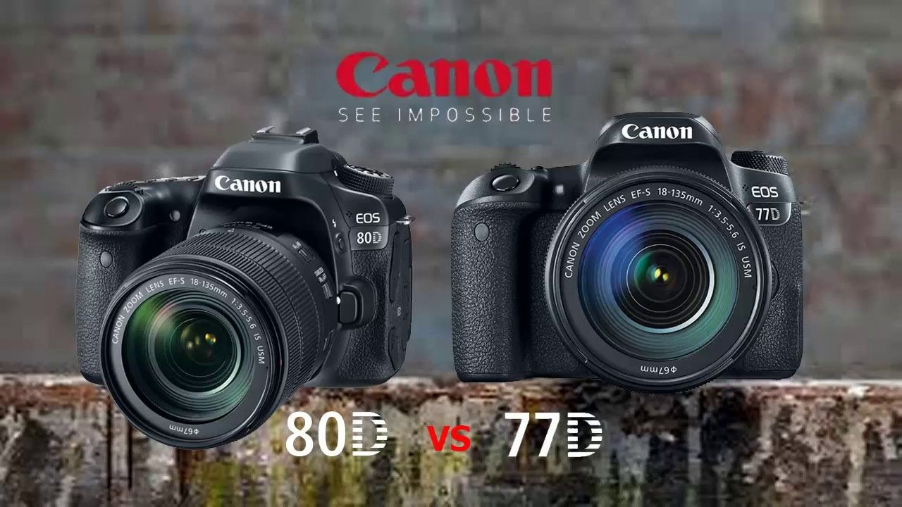 Best Cameras For Photography - Canon EOS 77D Vs 80D Comparision Buy ...