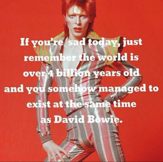 The Fashion World Remembers David Bowie Bowie David Bowie David Bowie Ziggy