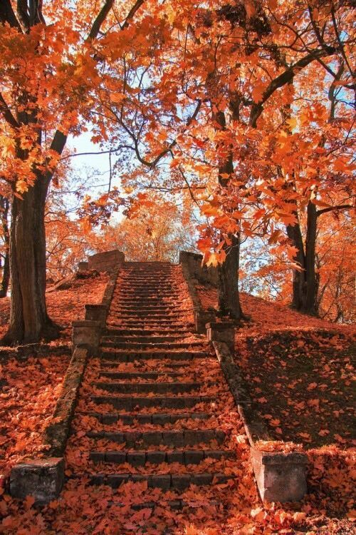 Herbstwetter - #automne #Herbstwetter - #automne #fotografielandschaft #herbstwetter #photoscenery
