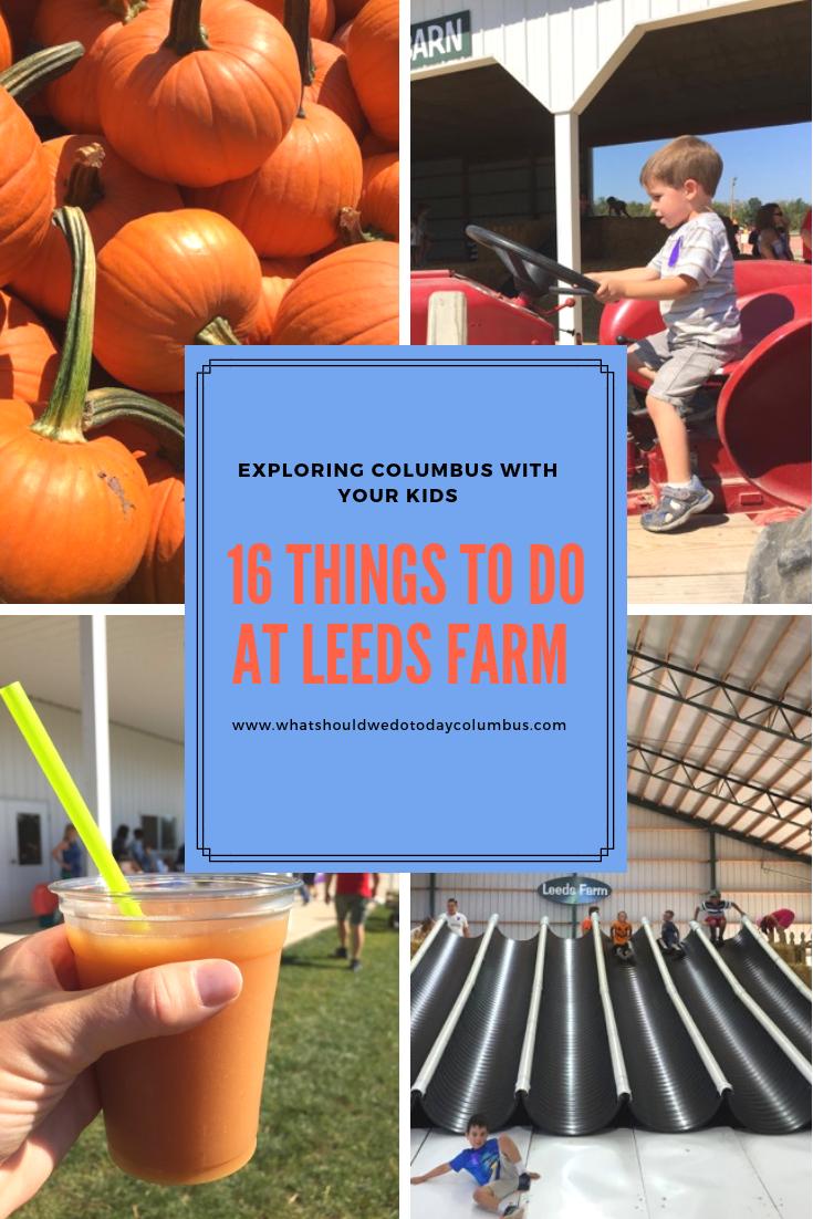 16 Things To Do At Leeds Farm Things To Do Farm Fun Farm