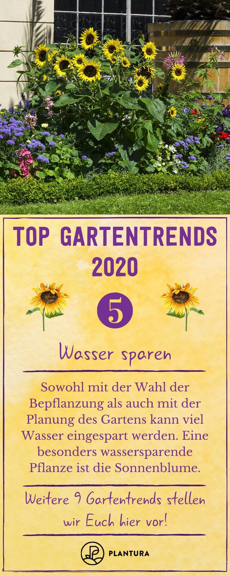 pflegeleichter garten Es gibt viele Mglichkeiten, wie man im Garten Wasser einsparen kann. Diesen und weitere Gartentrends stellen wir Euch hier vor! #gartentrends #wasser #garten