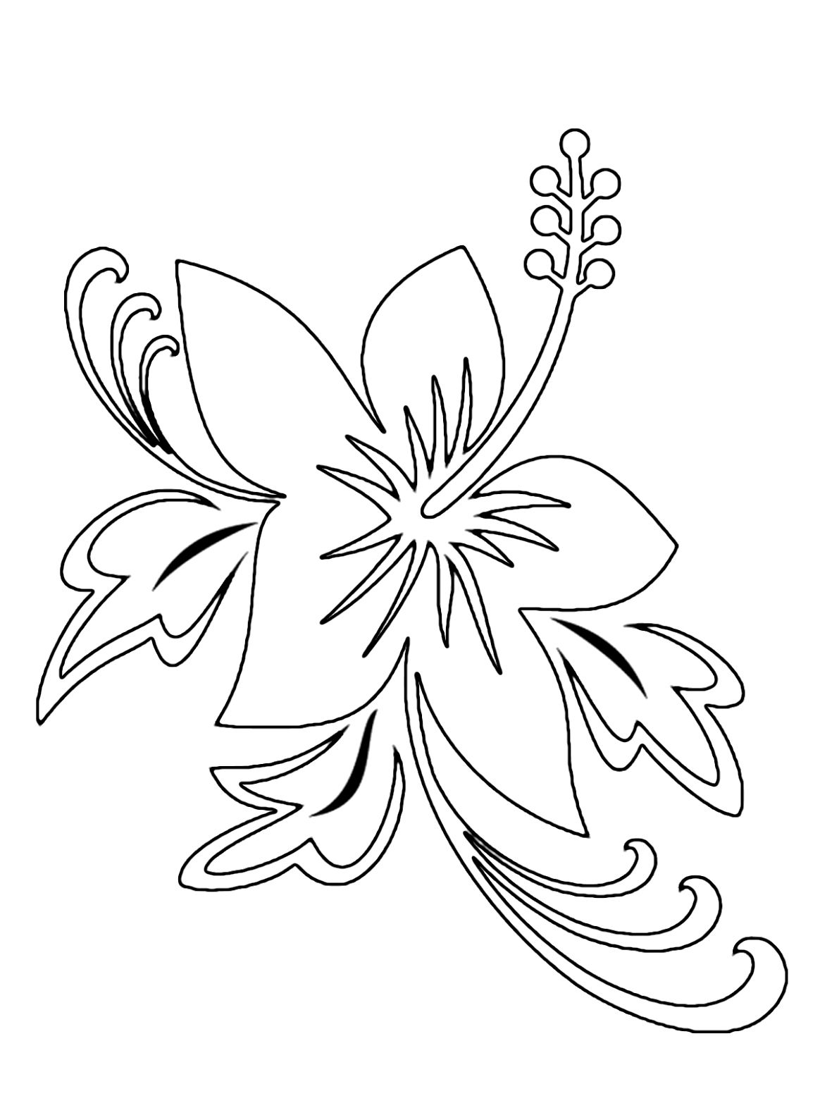 Hawaii Flower Outline Pin Hibiscus Coloring Pages 11170 Hd