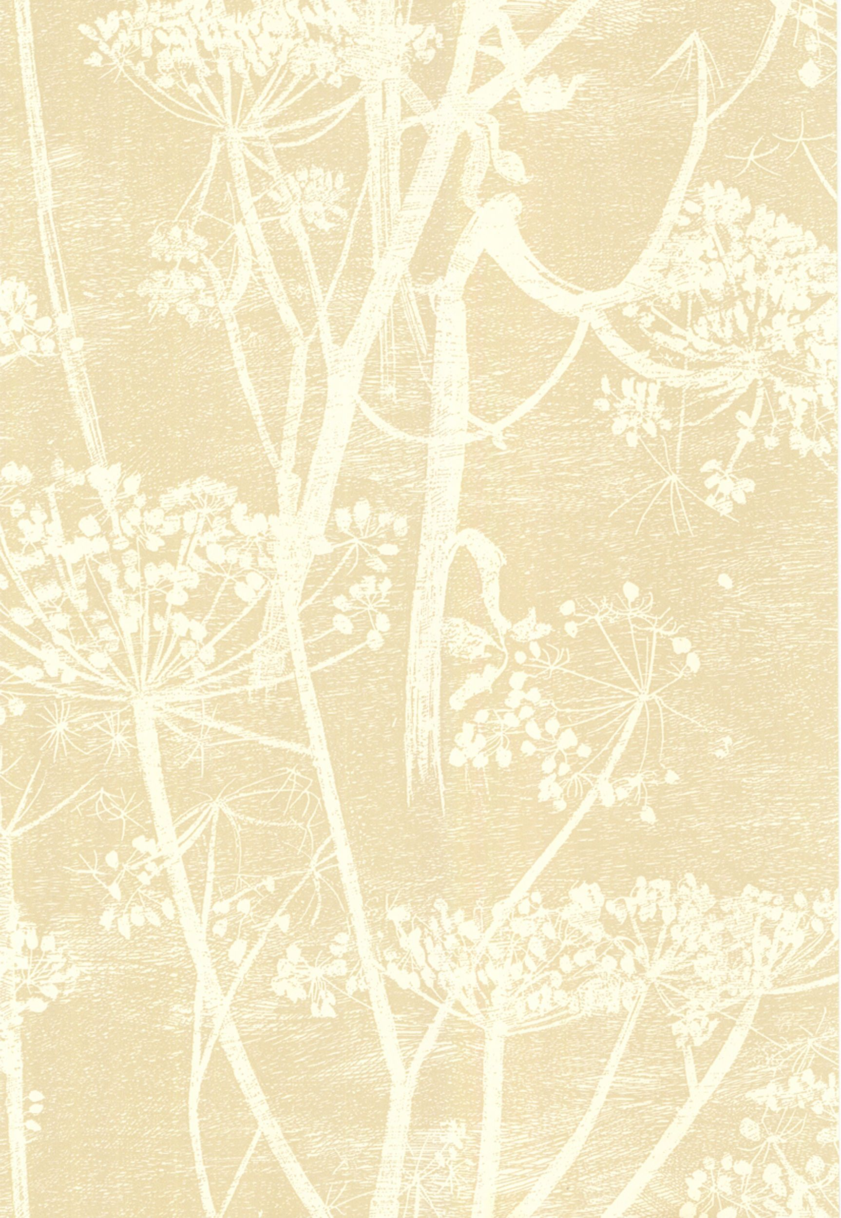 Cow Parsley White/Bge Cole and son wallpaper, Cole and