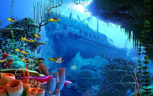Underwater Wallpapers Hd Underwater Wallpaper Underwater Background Aquarium Backgrounds