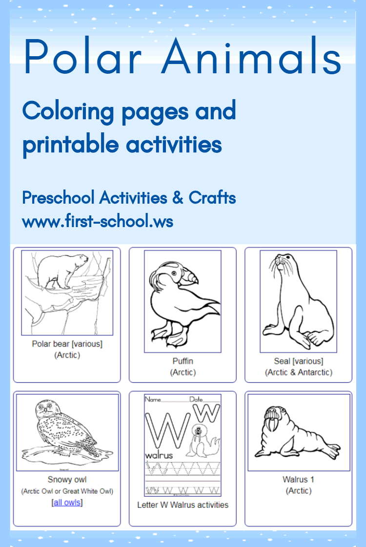 Free polar animals printable coloring pages, alphabet
