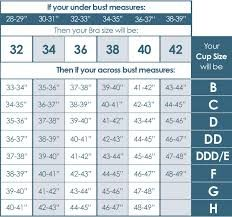 6a1a7aa547 Image result for bra size chart