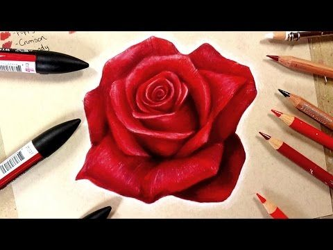 How To Draw A Hydrangea With Color Pencils How To Draw A Purple Flower Youtube Realistic Rose Drawing Roses Drawing Flower Drawing Tutorials