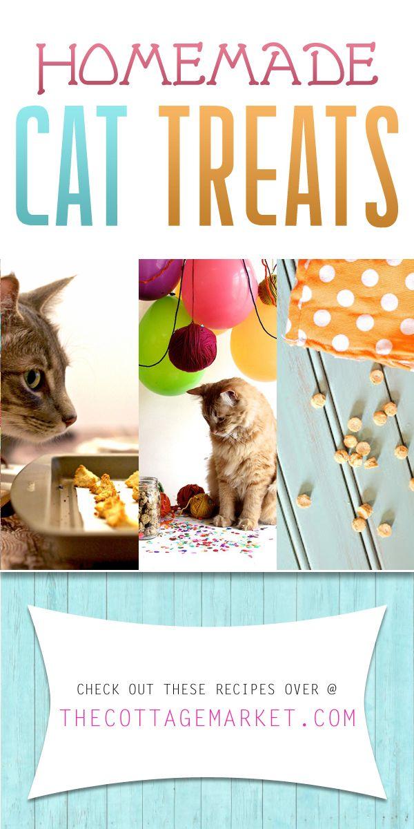 Homemade Cat Treats Homemade cat food, Cat treats, Pets