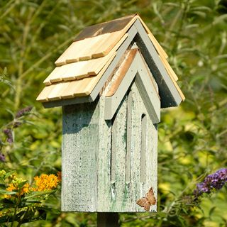 A long-lasting, beautiful home for butterflies.