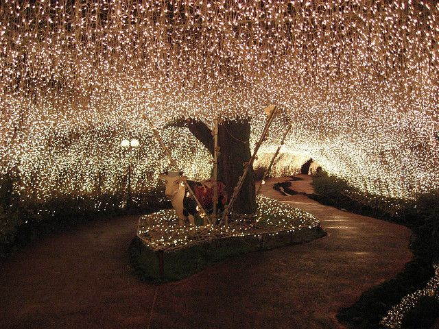 Fairy lights! I'd want twinkling lights throughout