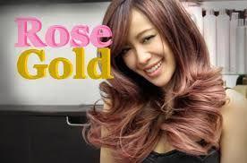Résultats de recherche d'images pour «balayage rose gold  dark hair»