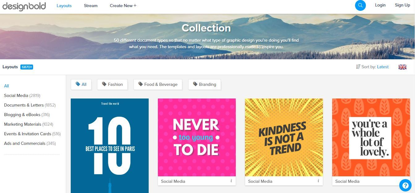 Review Designbold vs Canva Which Online Design Tool is