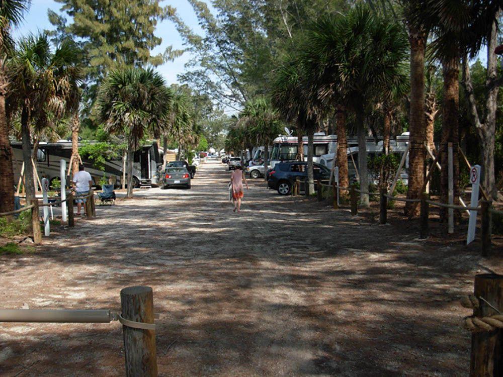 Turtle Beach Campground At Park Sarasota Fl