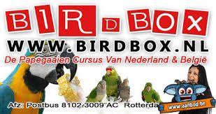 boek papegaaiencursus - Google zoeken