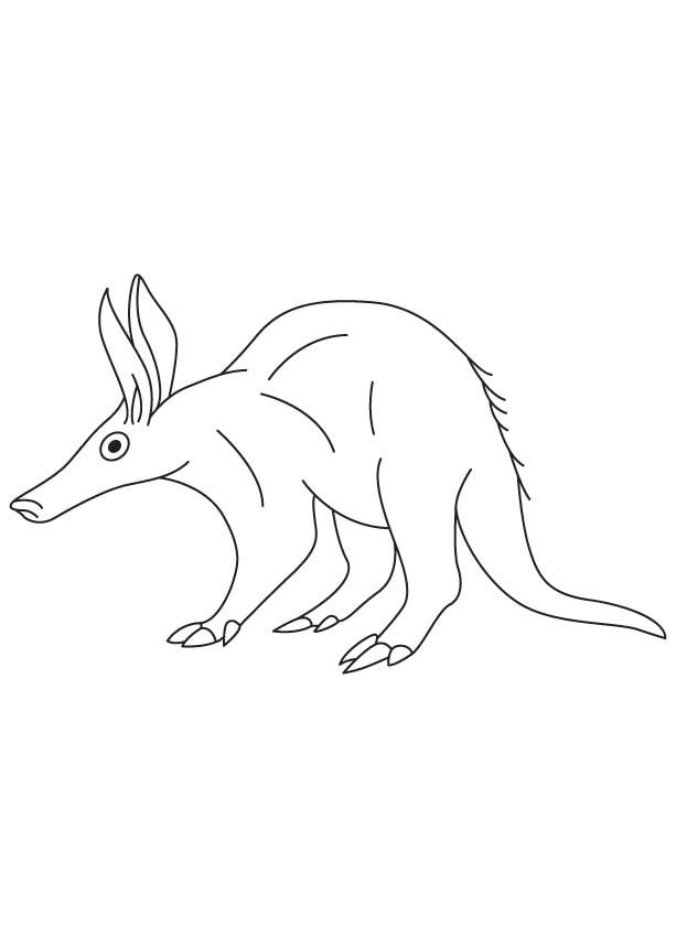 Attractive Aardvark Coloring Sheet | Download Free Aardvark Coloring Sheet For Kids |  Best Coloring Pages