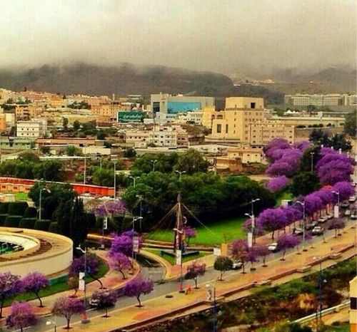 Abha South Of Saudi Arabia We Heart It Saudi Arabia Abha Summer Wallpaper Phone