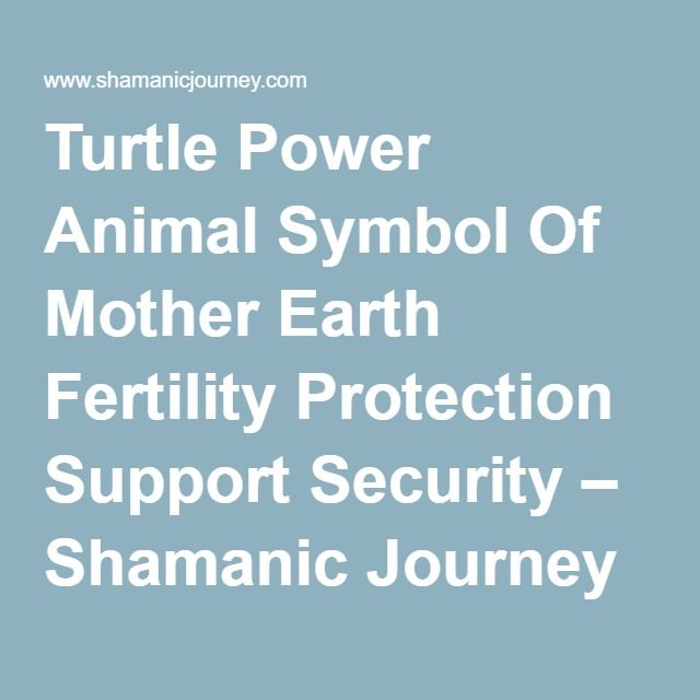 Turtle Power Animal Symbol Of Mother Earth Fertility Protection