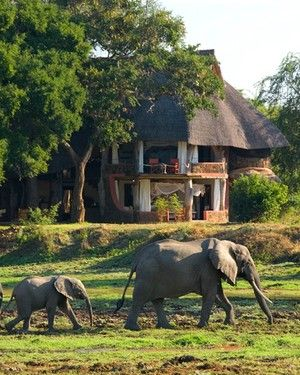 Luangwa Safari House  Where: South Luangwa   What's to Love: A super chic blend of creature comforts— Neil Rocher-designed architecture, designer furniture, a private chef— surrounded by vast savannah wilderness.  Good to Know: With some of the healthiest populations of elephants, giraffes, and hippos on the planet, South Luangwa is one of the wildest (and most remote) corners on earth. An excellent way to ease into a Zambian adventure.  www.fathomaway.com  #itravelfortheromance