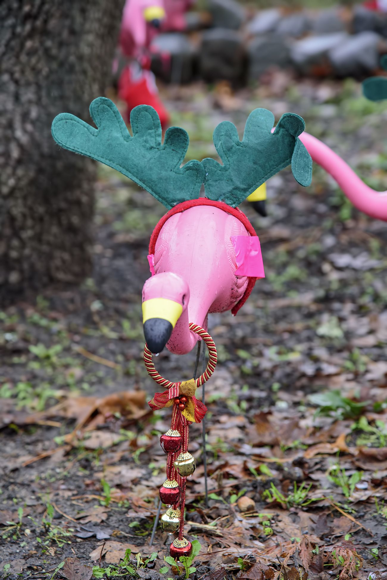 Lighted Pink Flamingo Lawn Ornaments Collections Of 400 x 300