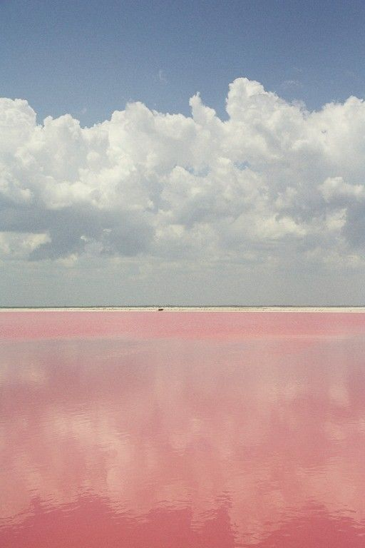 Land Estudio Nature Pink Lake Mother Nature