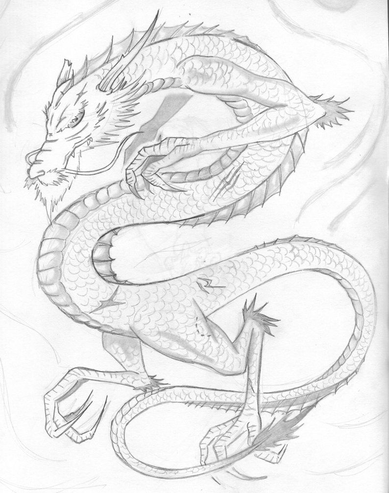 japanese dragon outline   japanese dragon 01 - sketch