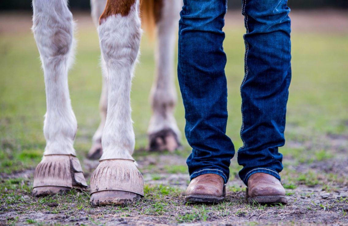 Horse farm photo shoot - Friends <3
