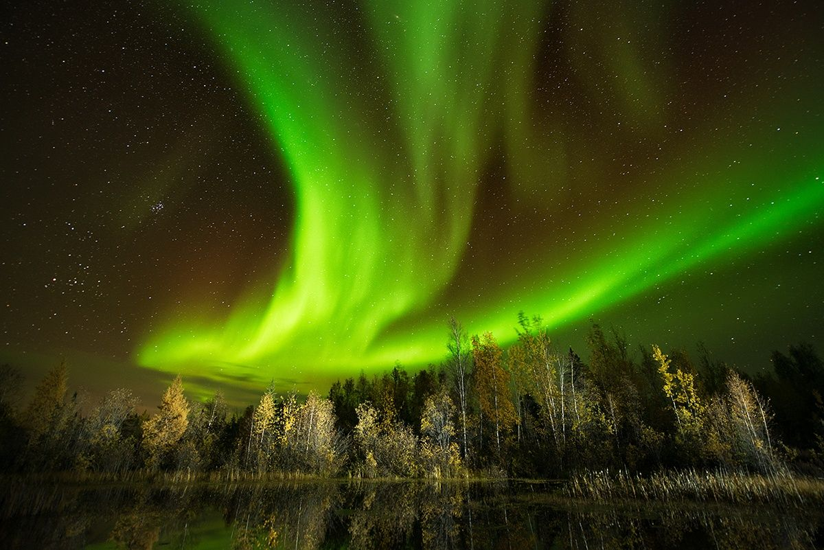 Photograph The flying phoenix by Victor Liu on 500px   Canada ...