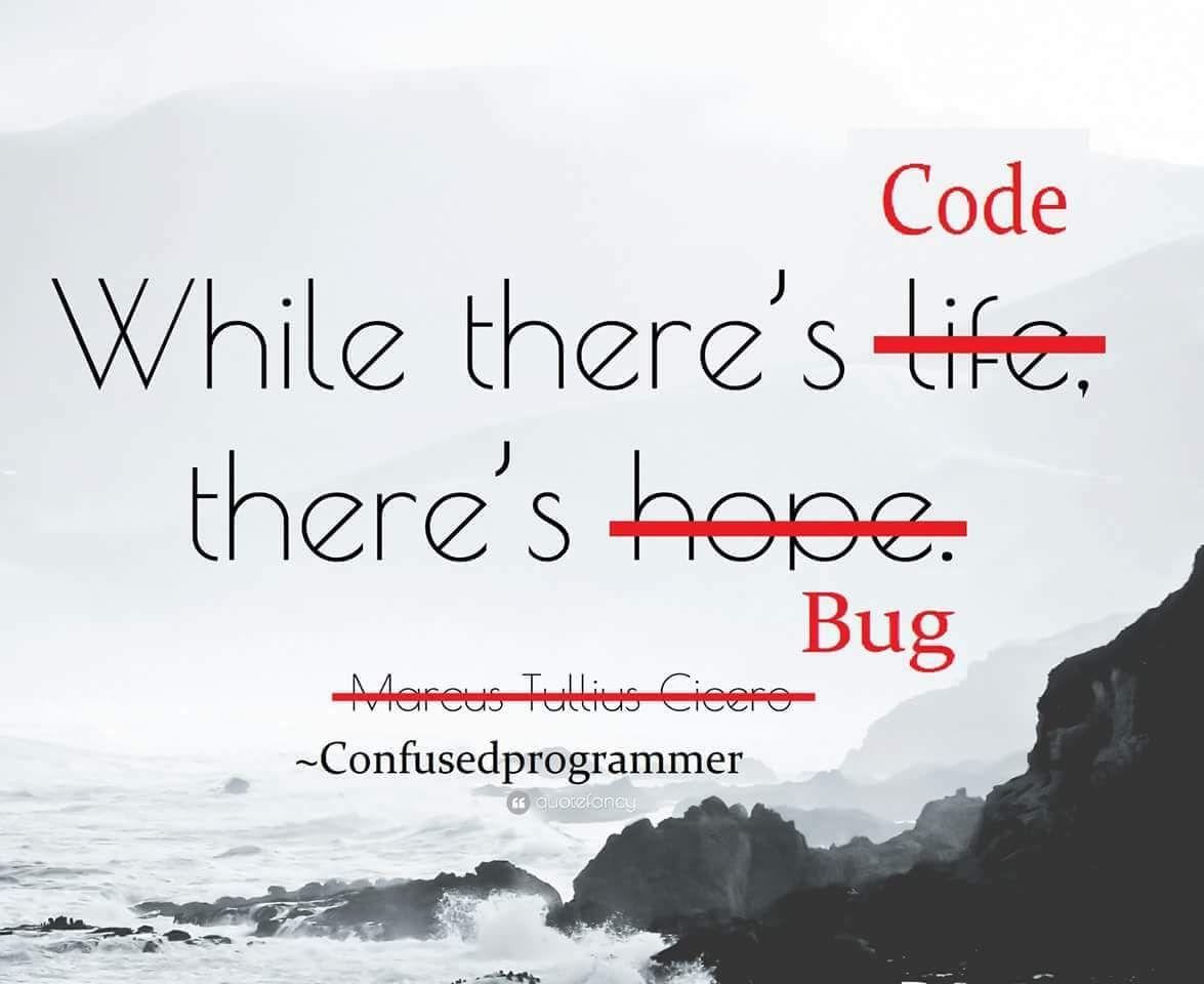 Programmer Quotes Programming Coding Software Developers Webdev Sysadmin Programmers Cs Programmer Humor Programmer Quote Programmer Jokes