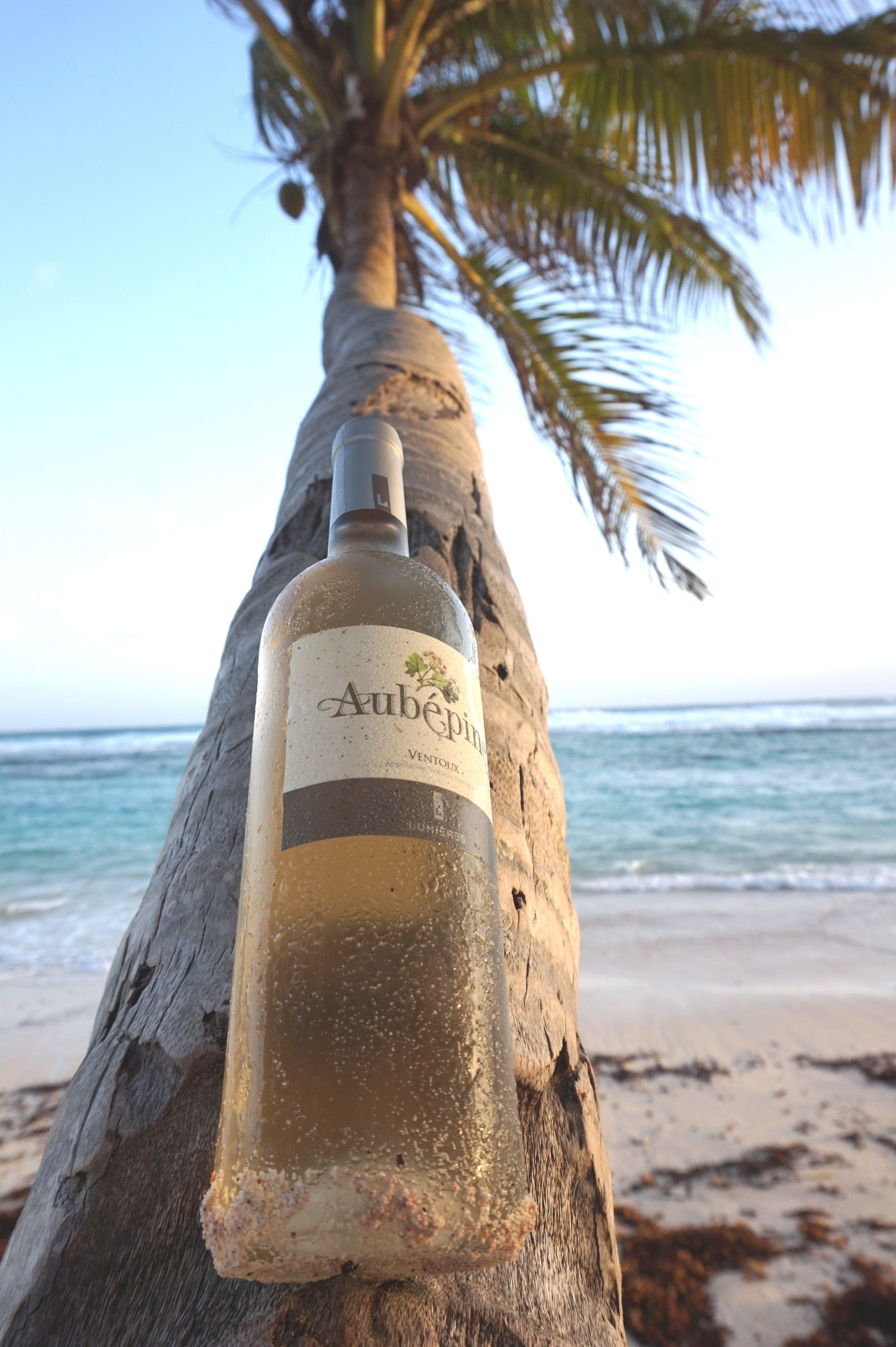 #cavedelumieres #aubepine #vin #blanc~#mariegalante #Martinique #sun #plage