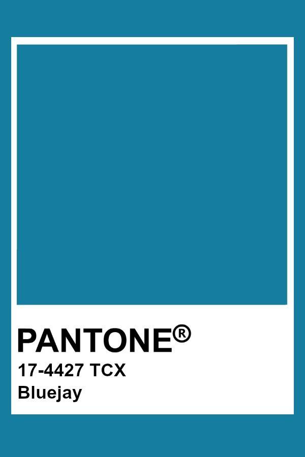 Pantone Bluejay Pantone Color Pantone Colour Palettes Pantone Palette