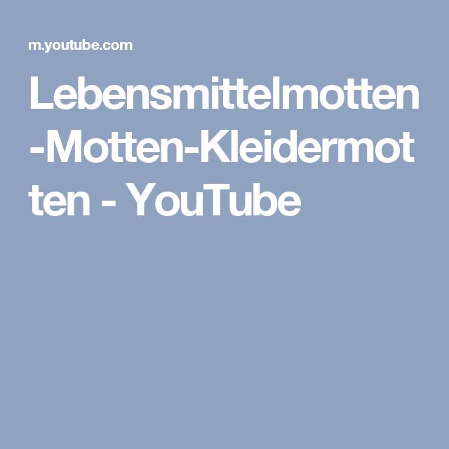 Lebensmittelmotten Motten Kleidermotten Youtube Ios Messenger
