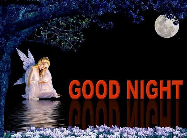 Most Beautiful Picture Of Good Night With Fairies Google Search