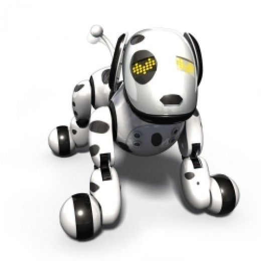 The Zoomer Robot Dog Toy Bring Him Home Now Interactive Puppy