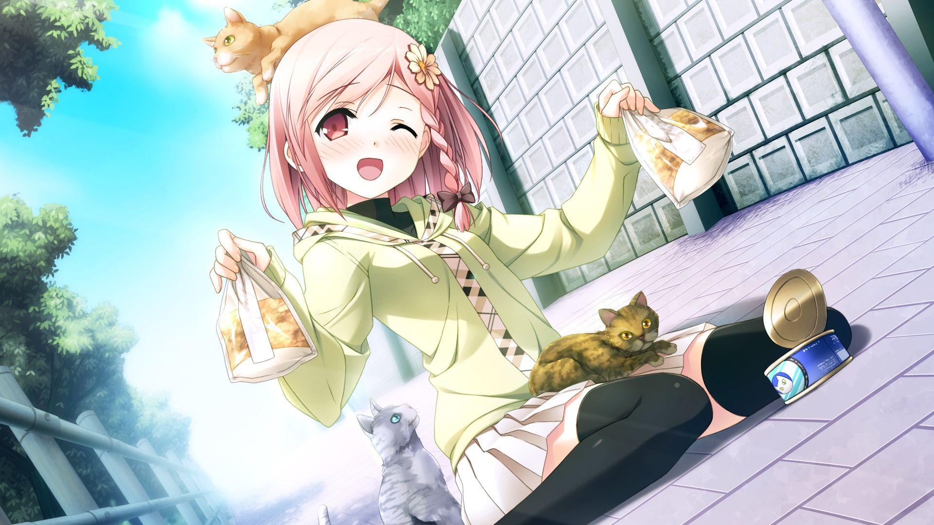 Cute Anime Cat People Wallpaper Widescreen Cute Anime Cat Anime Anime Images