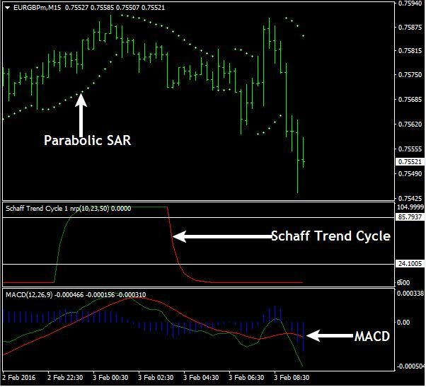 Download Free Forex Shaff Scalping Strategy How To Make Money