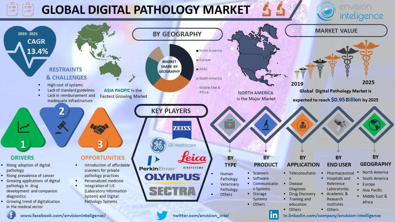 Global Digital Pathology Market Size, Outlook, Trends