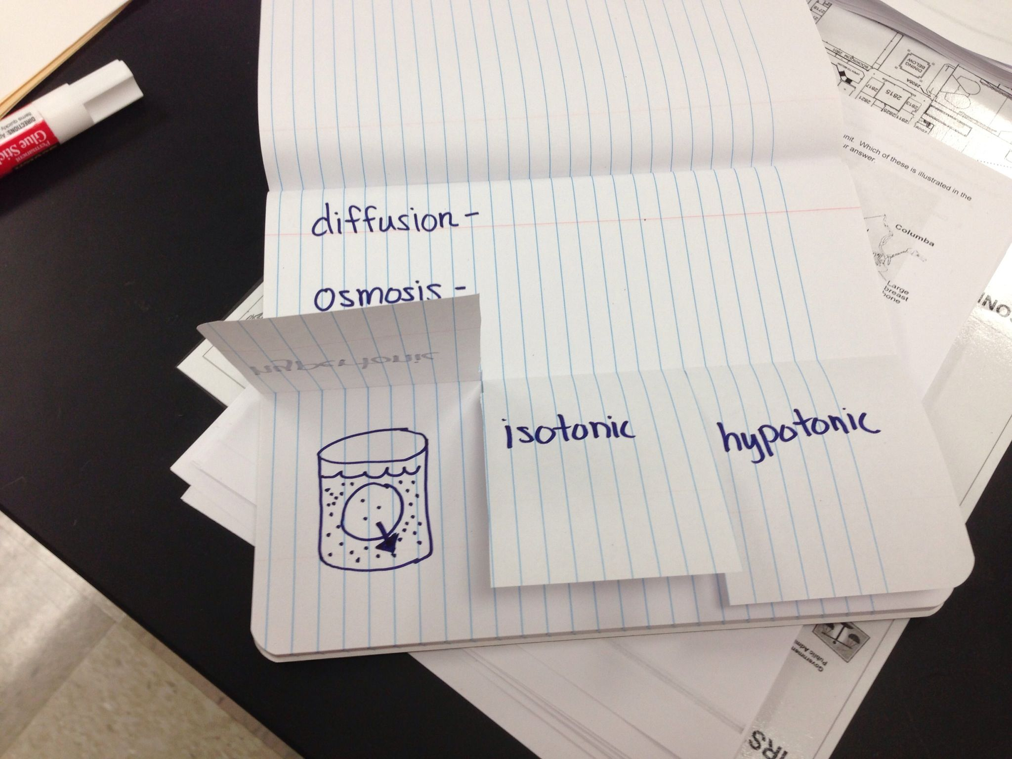 How To Make An Osmosis Foldable Teaching Biology Science Lessons Interactive Science Notebook [ 1536 x 2048 Pixel ]