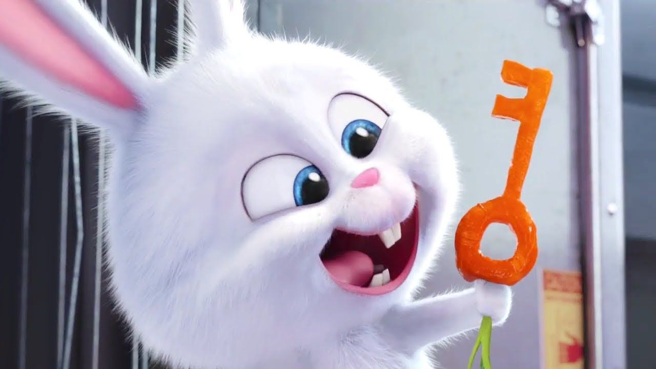 Zootopia The Secret Life Of Pets Snowball Funny Moments Hd Secret Life Of Pets Cute Disney Wallpaper Cute Bunny Cartoon