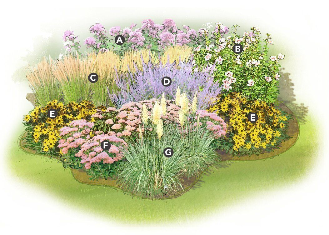 Perennial Garden Plans Zone 6 Exellent Perennial Garden Ideas Zone on zone 6 sun garden designs, zone 6 flower designs, zone 6 landscape designs,