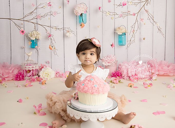 Cake Smash Newborn And Child Photographer In Burlington On