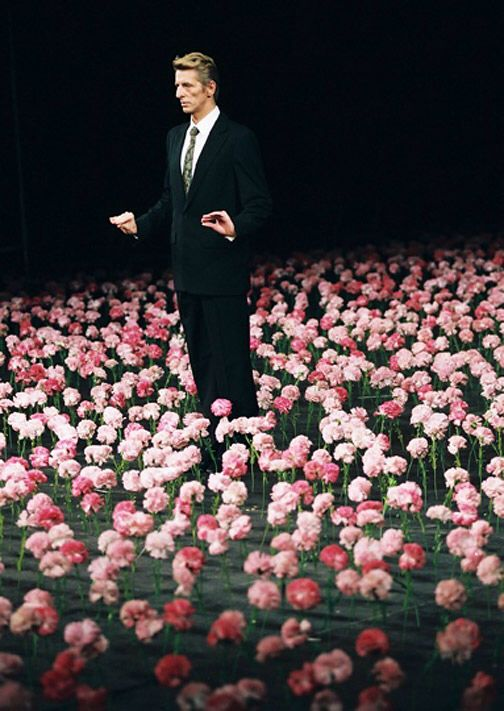 "Nelken, Pina Bausch, 1982 ""Nelken"" are carnations, and in Pina Bausch's dance-theatre piece, the floor is carpeted with them. The dancers, wearing evening dress and carrying chairs, step carefully over the flowers."